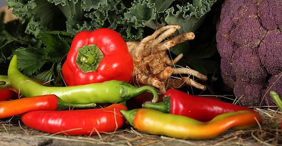 ¿Cómo es una alimentación saludable?